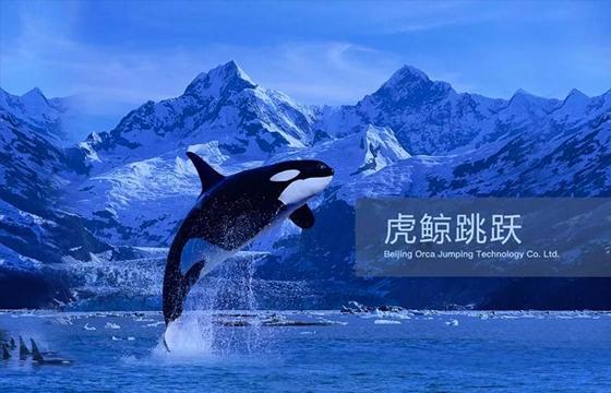 「虎鲸跳跃」完成300万美元Pre-A轮融资,蓝湖资本领投